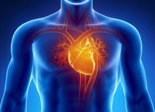 Best Cardiothoracic Surgeon in Ahmedabad