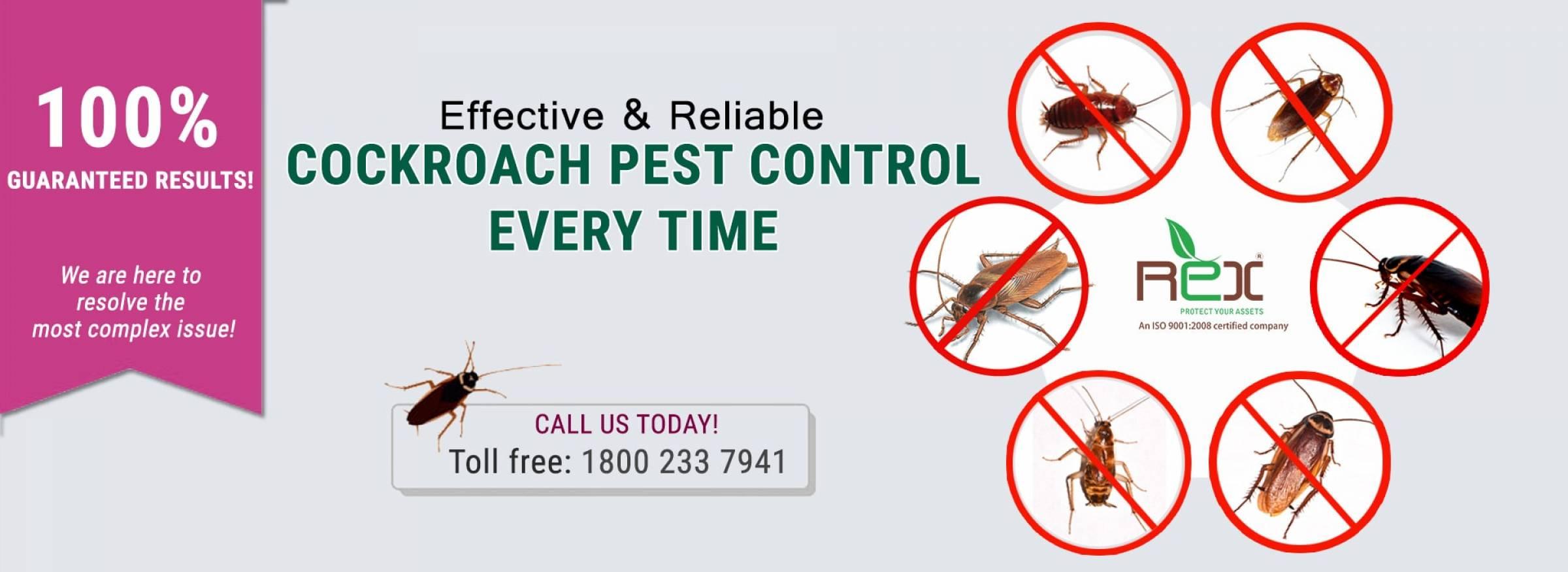 Best Cockroaches Pest Control Services