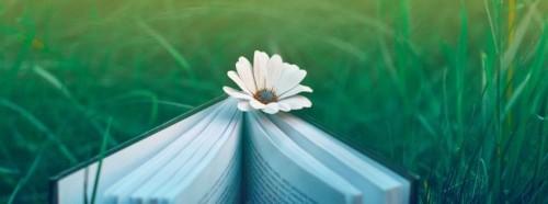 Reader Lovers