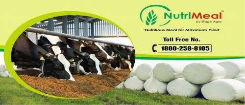 Silage Agro Private Limited