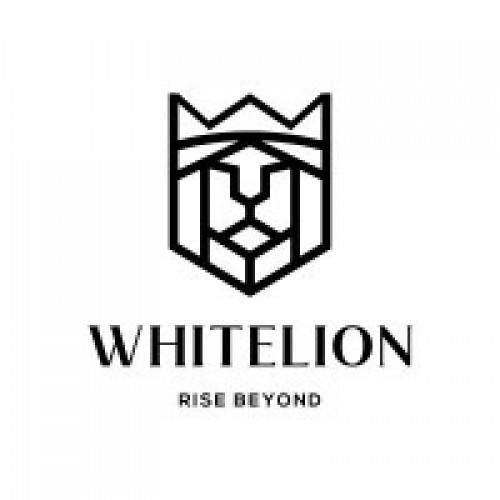 WhiteLion System Pvt. Ltd. | Switch Manufacturer In India